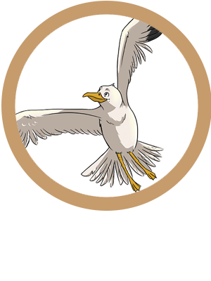 Seagull The Eagle Logo